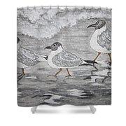 Sea Gulls Dodging The Ocean Waves Shower Curtain