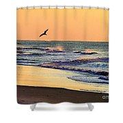 Sea It To Believe It Shower Curtain