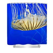 Sea Nettle Shower Curtain