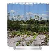 Sea Oats And Blooming Cross Vine Shower Curtain
