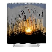 Sea Oats At Sunset Shower Curtain
