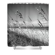 Sea Oats In Black And White Shower Curtain
