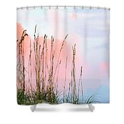 Sea Oats Shower Curtain by Kristin Elmquist