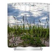Sea Oats Sand Dune Sky Shower Curtain