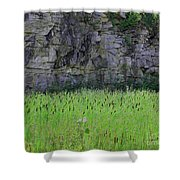 Sea Of Cattails Shower Curtain