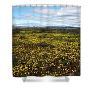 Sea Of Gold Shower Curtain