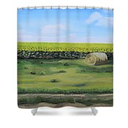 Sea Of Sunflowers Shower Curtain