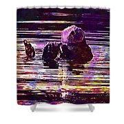 Sea Otter Swimming Floating Water  Shower Curtain