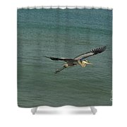 Sea Plane Shower Curtain