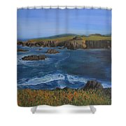 Sea Ranch In Spring Shower Curtain
