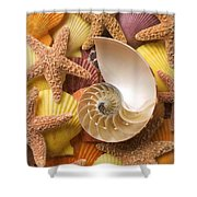 Sea Shells And Starfish Shower Curtain by Garry Gay