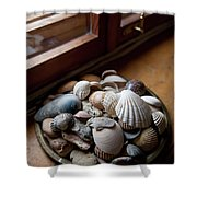 Sea Shells And Stones On Windowsill Shower Curtain