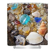 Sea Shells Art Prints Blue Seaglass Sea Glass Coastal Shower Curtain