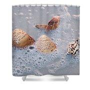 Sea Shells In An Ocean Wave Shower Curtain
