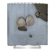 Sea Shells In Snow Shower Curtain