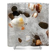 Sea Shells Rocks And Ice Shower Curtain