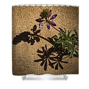 Sea Shore Lupine - 365-60 Shower Curtain
