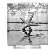 Sea Star Bw Shower Curtain