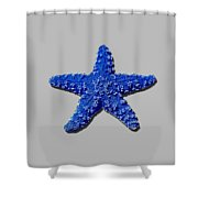 Sea Star Navy Blue .png Shower Curtain