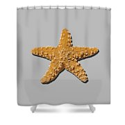 Sea Star Orange .png Shower Curtain