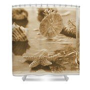 Sea Treasure -sepia Shower Curtain
