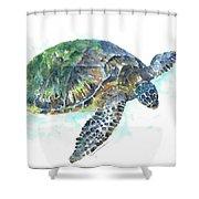 Sea Turtle #20 Shower Curtain