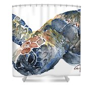 Sea Turtle - Large Size Shower Curtain
