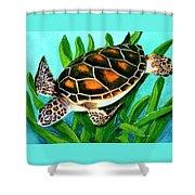 Sea Turtle Honu #352 Shower Curtain