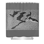 Sea Turtle Inlay In Grayscale Shower Curtain
