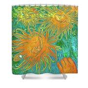 Sea Urchin 10 Shower Curtain