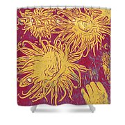 Sea Urchin 6 Shower Curtain