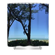 Seagrapes And Pines Shower Curtain