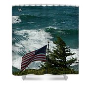 Seagull And Flag Shower Curtain