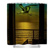 Seagull And Sunset Clouds Shower Curtain by Fernando Cruz