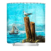 Seagull At Port Entrance Shower Curtain