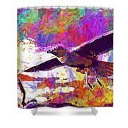 Seagull Birds Flight Wings Freedom  Shower Curtain