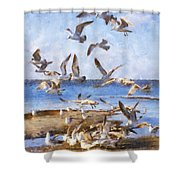 Seagull Convention Shower Curtain