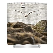 Seagull Flying Into Ocean Jetty Shower Curtain