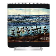 Seagull Get-together Shower Curtain