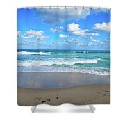 Seagull On The Atlantic Shore Shower Curtain