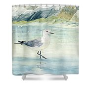 Seagull On The Beach Shower Curtain