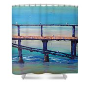 Seagull Paradise At Merimbula Australia Shower Curtain