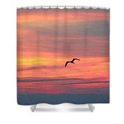 Seagull Silhouette Shower Curtain