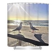 Seagull Sonnet  Shower Curtain