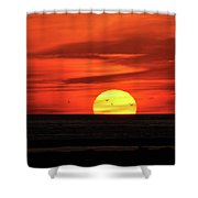 Seagull Sunset Shower Curtain