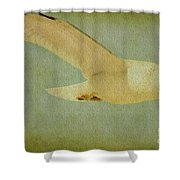 Seagull Texture Shower Curtain