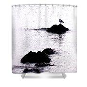 Seagull Waiting Shower Curtain