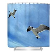 Seagulls # 6 Shower Curtain