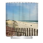 Seagulls Beach Shower Curtain
