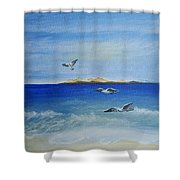 Seagulls By The Sea Shower Curtain